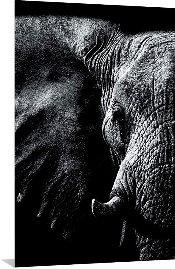 Amazon Com Greatbigcanvas Dark Elephant 2 Metal Wall Art Print Elephant Home Decor Artwork 12 X18 Posters Prints