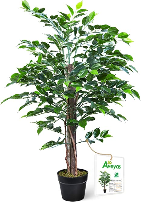 Amazon Com Aveyas 3ft Artificial Ficus Silk Tree In Plastic Nursery Pot Fake Plant For Office House Farmhouse Living Room Home Decor Indoor Outdoor Home Kitchen