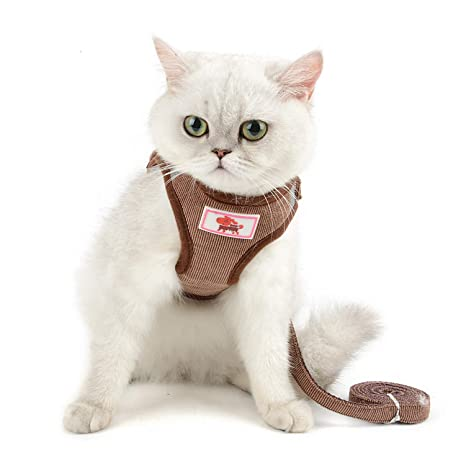 smalllee_lucky_store - de pana arnés y correa para gatos ...