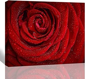 The Melody Art Canvas Wall Art Dew on The red Rose Pictures for Home Decoration Modern Giclee Landscape Painting 12x16 in 1 Panel Stretched and Framed Ready to Hang