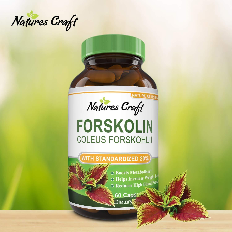 Amazon.com: Puro Extracto de Forskolin para pérdida de peso ...