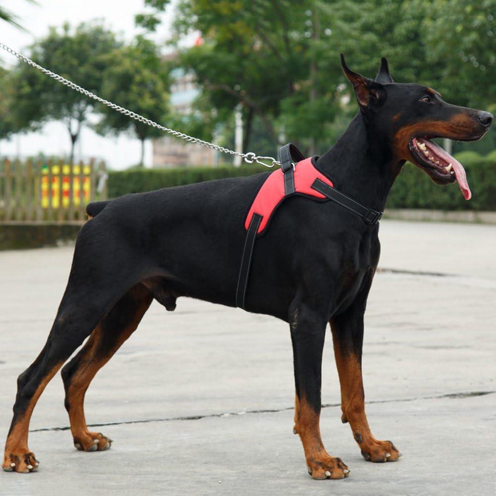 Treat Me Arnés para Perro Acolchado Reflectante Ajustable Pecho ...