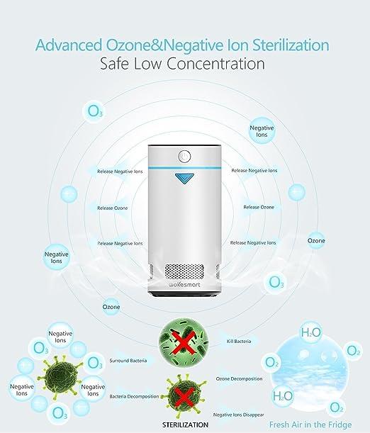 wokesmart nevera Desodorizador, ionizador purificador de aire ...