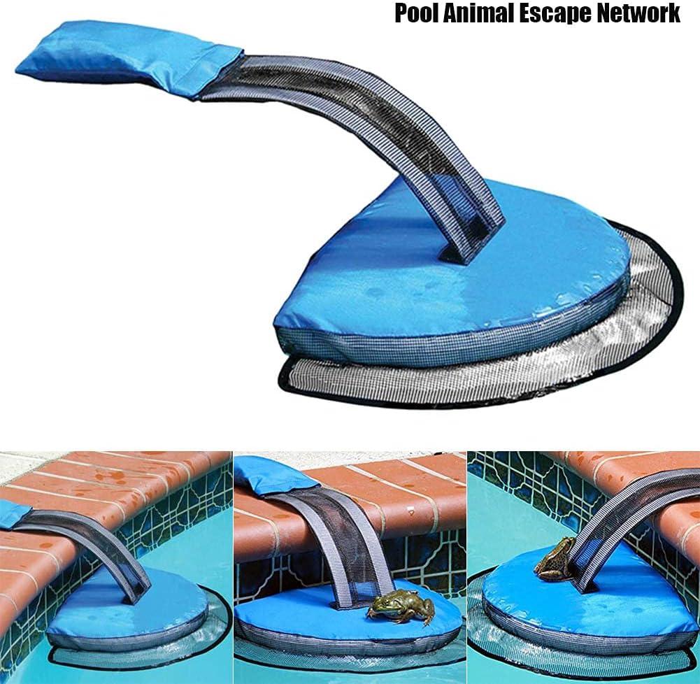 gaixample.org Qingxin Swimming Pool Animal Critter Frog Saving ...