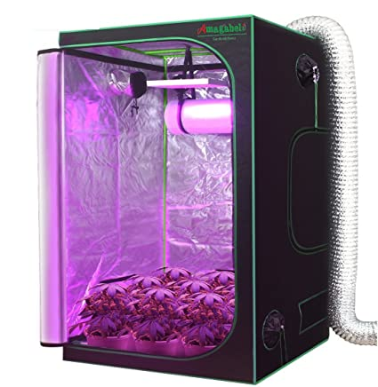 Amagabeli 4x4 Hydroponic Grow Tent for Indoor Plant Growing 48u0026quot;x48u0026quot;x80u0026quot; with  sc 1 st  Amazon.com & Amazon.com : Amagabeli 4x4 Hydroponic Grow Tent for Indoor Plant ...
