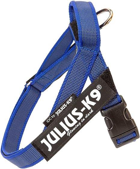Julius-K9 Arnés de Correa Color & Gray, Talla: Mini-Mini, Azul ...