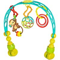 Bright Starts OBall Flex 'n Go Activity Arch Take-Along Toy