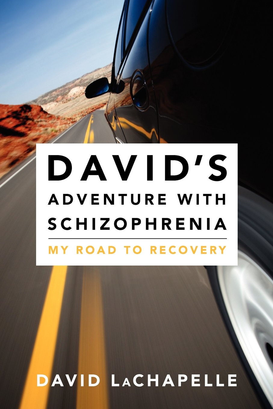 Read Online David's Adventure with Schizophrenia: My Road to Recovery pdf
