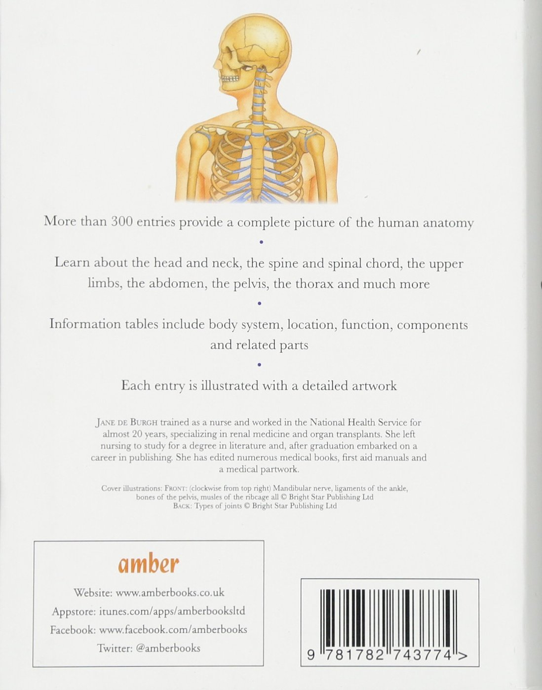 Human Body Understanding Anatomy Mini Encyclopedia Amazon