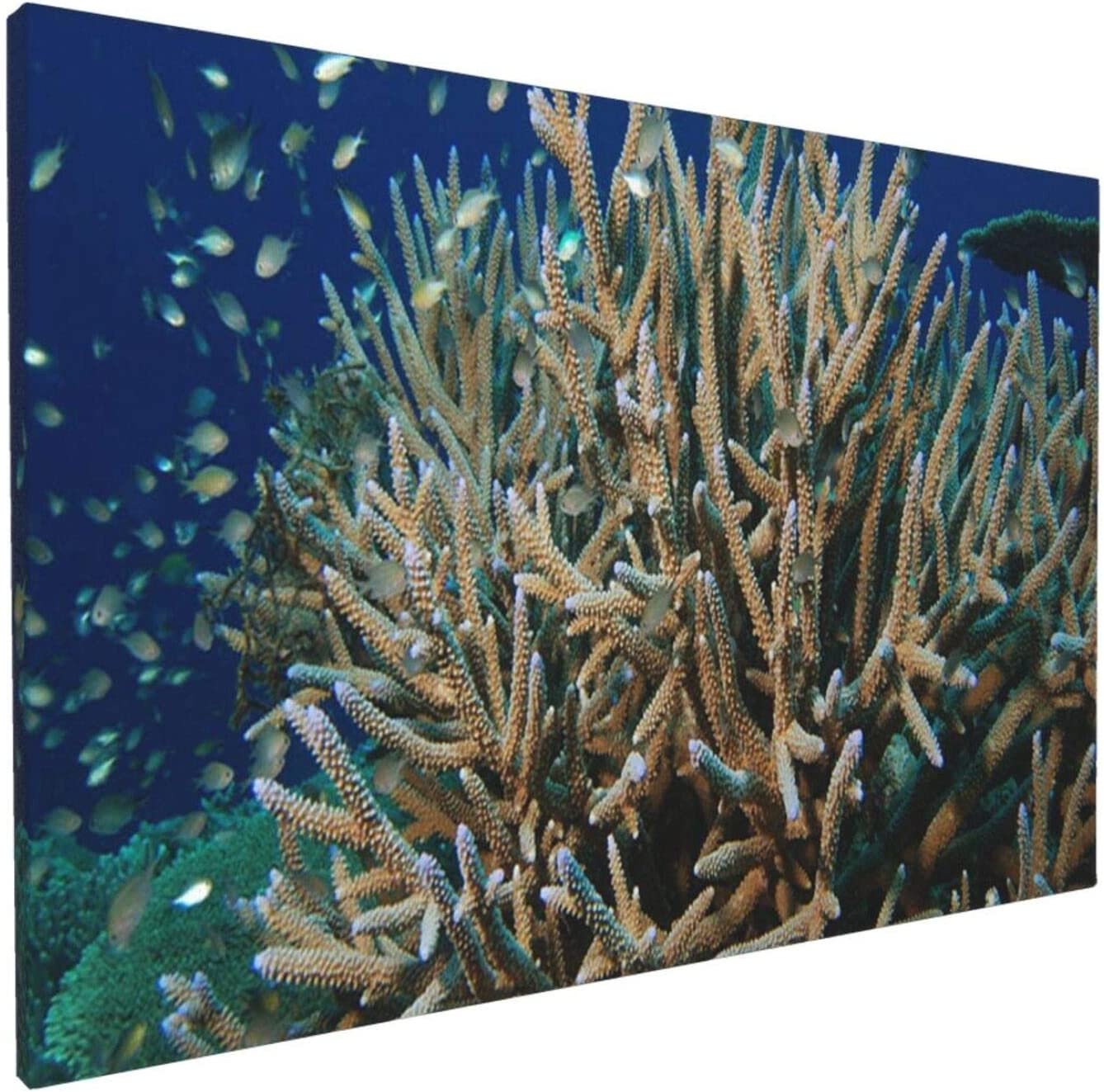 Abstract Wall Art Gallery Wall Decor, Staghorn Coral Wall Paintings, Farmhouse Decor for the Home, Wall Pictures for Living Room Frameless Wall Hanging Decor Paintings 18x12 Inch