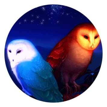 Amazoncom Cute Owl Live Wallpaper Appstore For Android