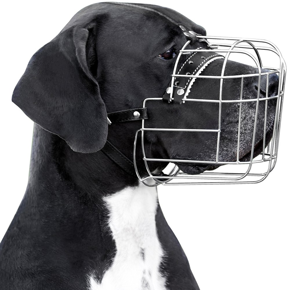 BronzeDog Metal Wire Basket Dog Muzzle Great Dane Mastiff Leather Adjustable Muzzles for Large Dogs (XL) by BronzeDog