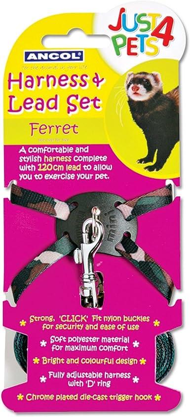 Ancol Pet Products - Juego de arnés y correa Just 4 Pets para hurones