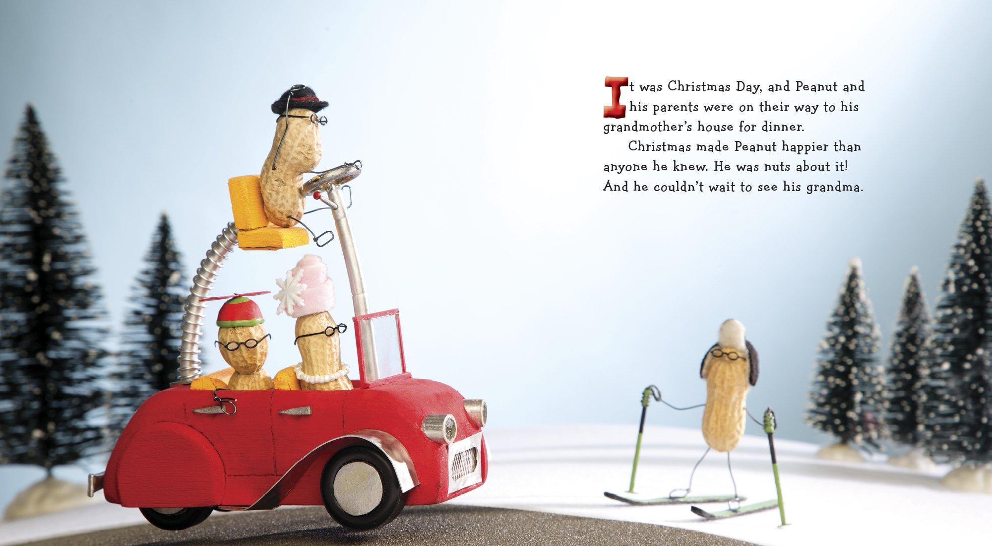 Merry Christmas, Peanut!: Terry Border: 9780399176210: Amazon.com: Books