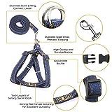 Triumilynn Dog Leash Harness Set, Adjustable