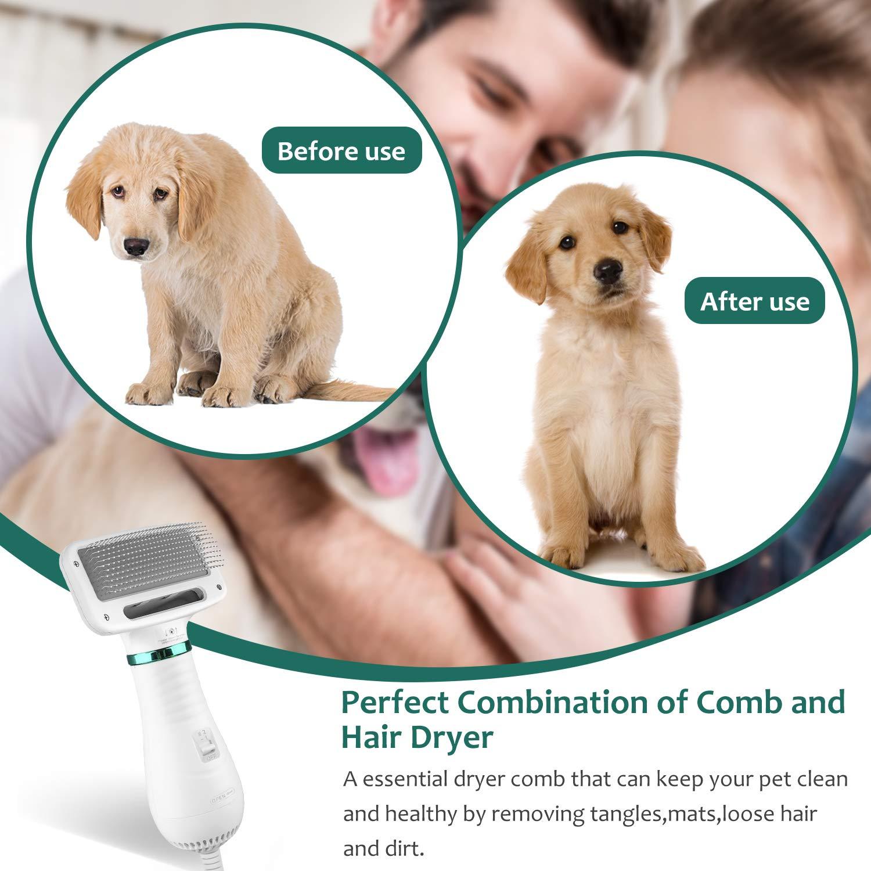 Impostazioni di temperatura regolabili prevenzione delle malattie della pelle Kupet Asciugacapelli per Cane,2 in 1 Spazzola per Cani e Gatti,Spazzola e Asciugatrice