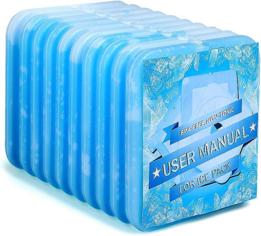 Thermos Ice Pack 2 x 400 g 179600 blocs de glace pour refroidisseur Sacs Coolers cases
