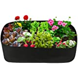 pannow Fabric Raised Planting Bed, Garden Grow Bags Herb Flower Vegetable Plants Bed Rectangle Planter for Plants Flowers and
