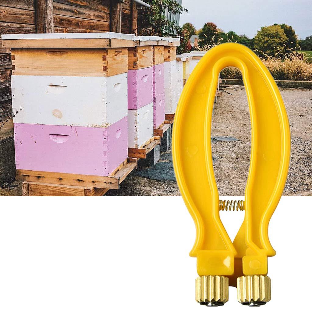 Ycncixwd Beekeeper Bee Frame Tight Yarn Wire