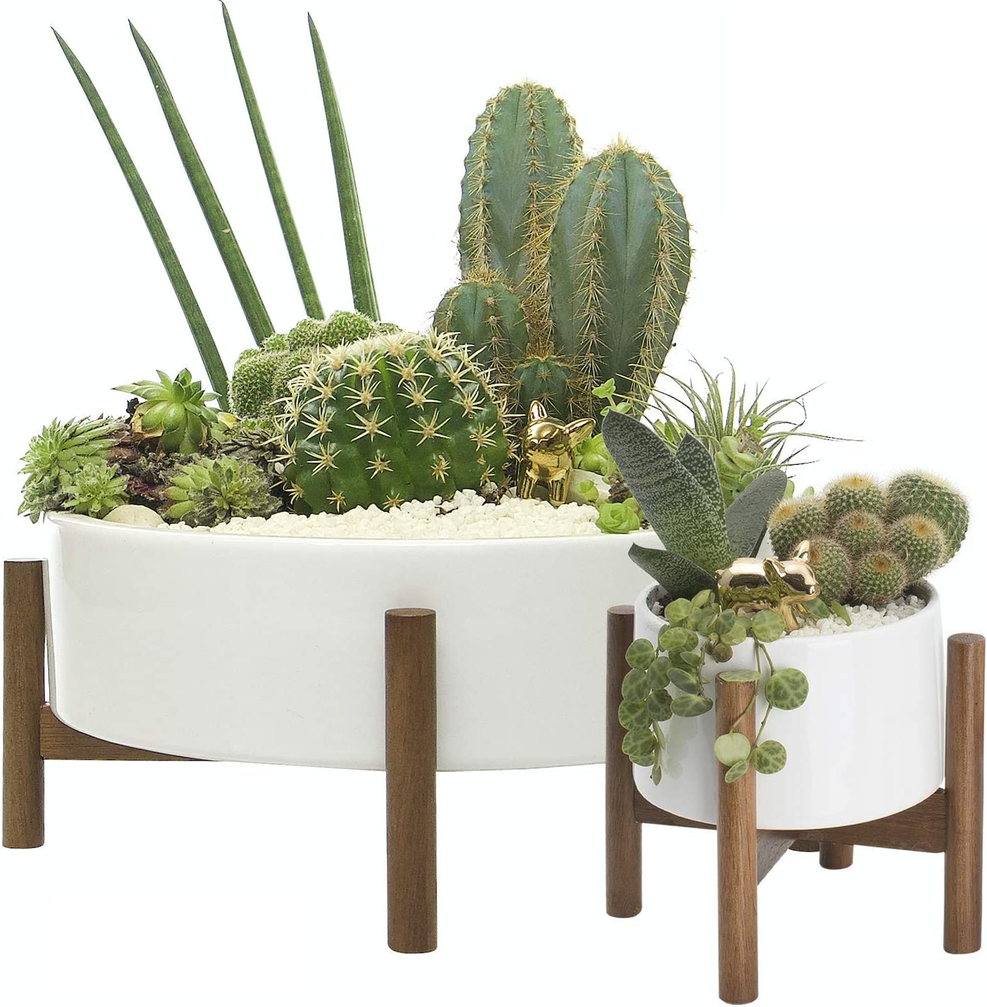 Set 2 Mid Century Modern Succulent Planter Large Bowl and Midi, Pots with Wood Stand and Hidden Saucer, Round Ceramic White Planters, Cactus and Plant Container with Drainage, Indoor