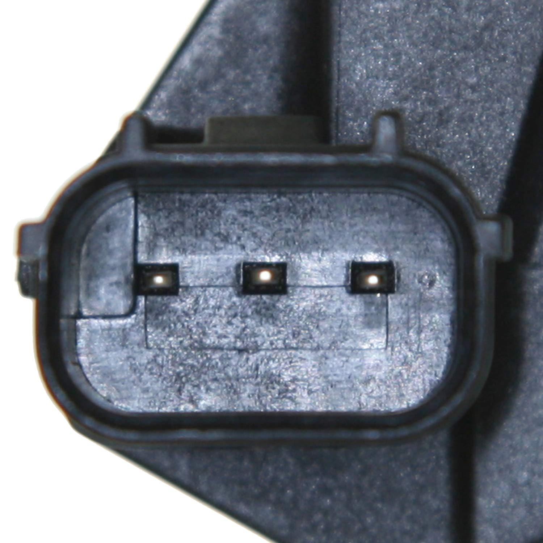 0.72 Width 32.25 Length D/&D PowerDrive 5550800 Vera Precision Replacement Belt