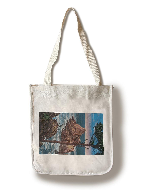 割引発見 Pinnacle点、点Lobos Bag State Park Canvas Tote Bag Bag Pinnacle点、点Lobos LANT-2415-TT B0182QWH8Q Canvas Tote Bag, POMPADOUR:f860583b --- arianechie.dominiotemporario.com