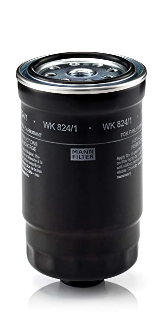 Hyundai I10 Fuel Filter