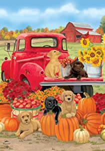 Briarwood Lane Fall Puppies Garden Flag Red Pickup Dogs Labs 12.5