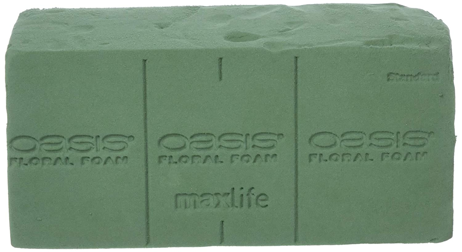 Oasis Pack of 6 Standard Floral Foam Bricks Oasis® Floral Products 10-20006