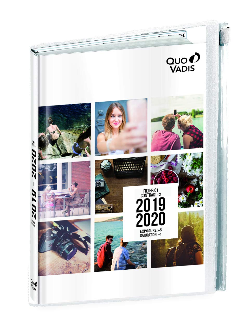 Amazon.com : Quo Vadis 128145920MQ Year 2020 EUROTEXTAGENDA ...
