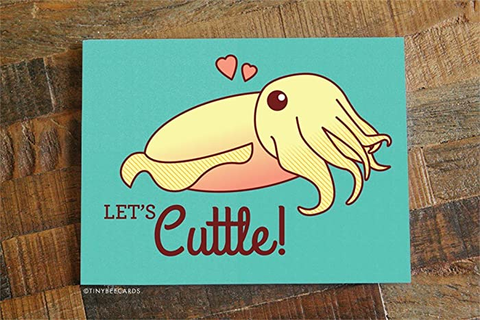 Image of: Day Lets Cuttle Funny Cuttlefish Valentine Card Amazoncom Amazoncom Lets Cuttle Funny Cuttlefish Valentine Card Handmade