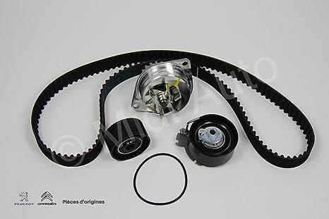 Kit Distrib + PPE, Berlingo VP/VU, C2, C3, C3 II, C3 Pluriel, C4, C-Elysee, ...