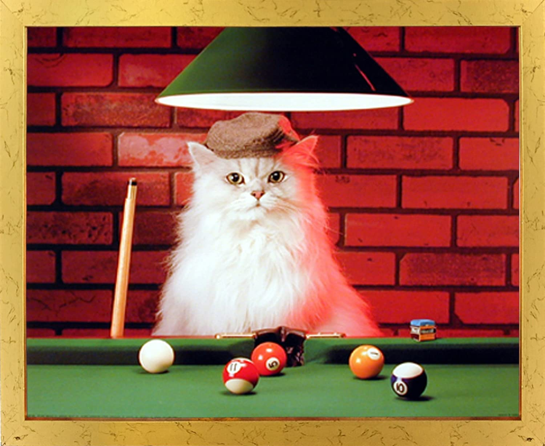 Gato persa jugando al la habitación de los niños de billar con ...