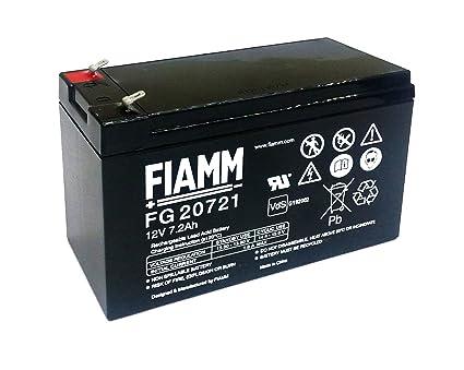 Fiamm fg batteria ups ah v amazon informatica