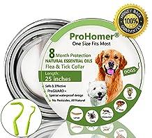 ProHomer  : le meilleur de milieu de gamme