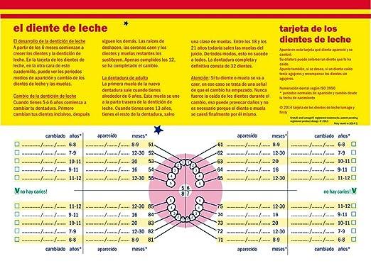 Amazon.com: Firsty Cajita para Dientes de Leche en Español (rosa, Chica) ABF Round<: Toys & Games