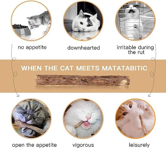 AIDIYA Catnip De Hierba Gatera De Matatabi para Gatos Natural ...