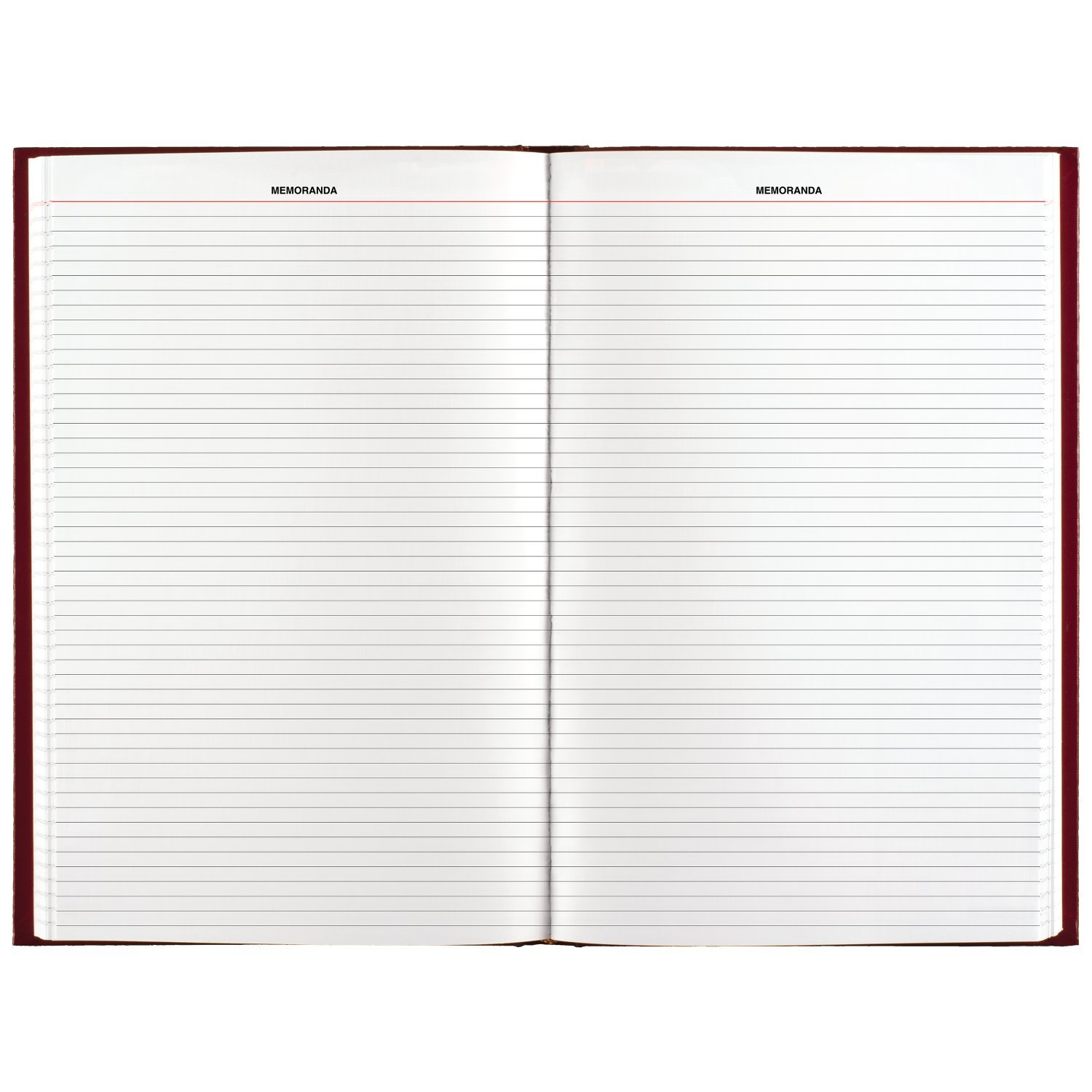 AT-A-GLANCE 2019 Daily Diary, January - December, 8-3/16'' x 13-7/16'', Standard, Red (SD38179) by AT-A-GLANCE (Image #3)