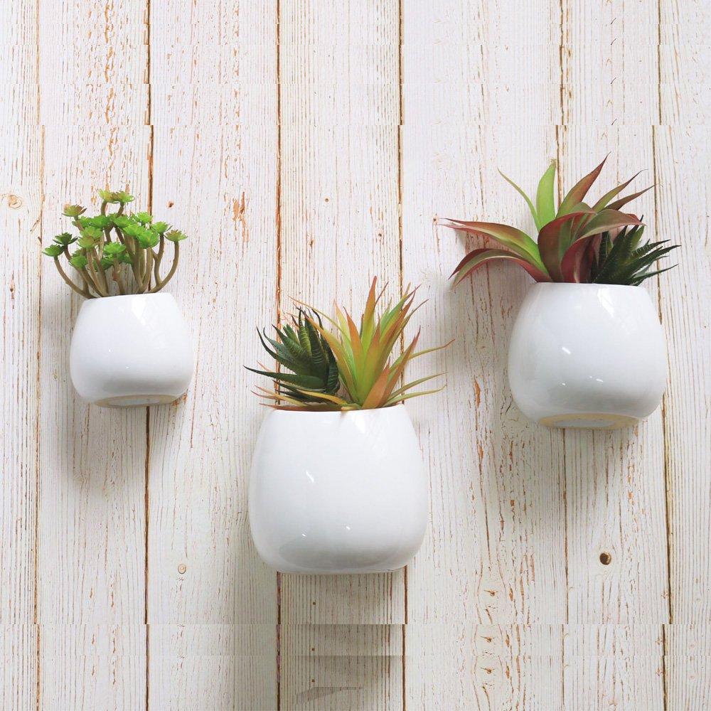 3 PCS Wall Mounted Ceramic Flower Plant Vase, Hanging Planters,Modern Ceramic Hanging Planters, Succulent Plant Pots, White by Purzest
