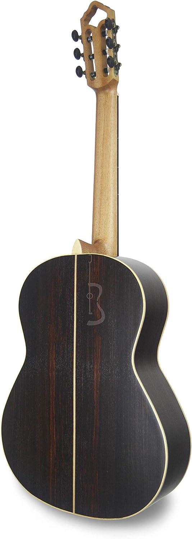 APC Instruments Luthier Gold - Instrumento de cuerdas: Amazon.es ...