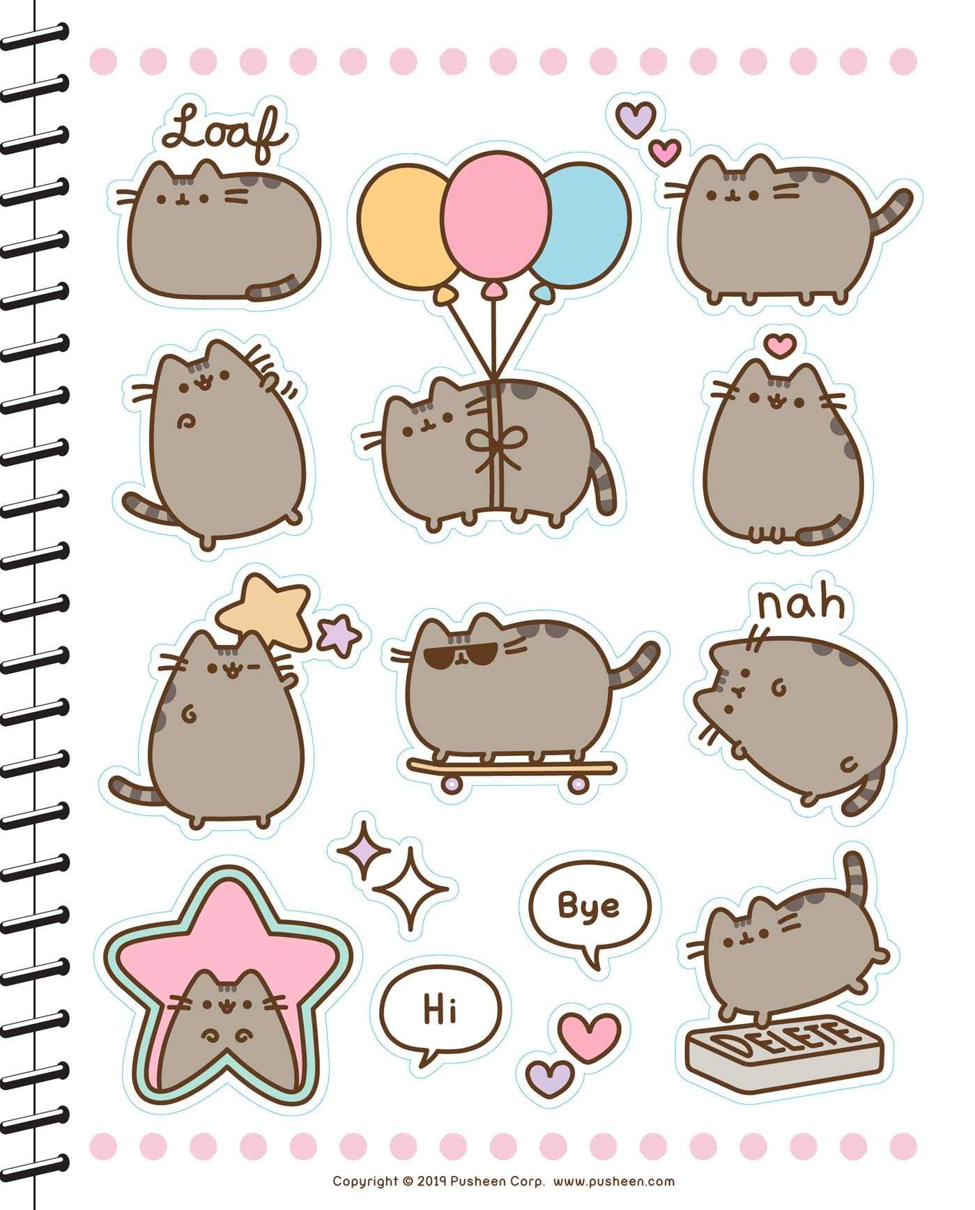 Pusheen 2019-2020 Weekly/Monthly Planner Calendar: Claire ...