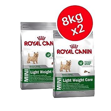 Royal Canin Mini Light, Cuidado de Peso Adulto Seco Perro Alimento 8 kg (Pack de 2): Amazon.es: Productos para mascotas