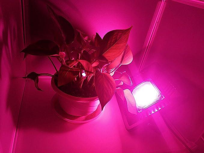 Led grow light bulb full spectrum wy new waterproof ip67 50w 6000k led grow light bulb full spectrum wy new waterproof ip67 50w 6000k 250w equivalent 5000lm super aloadofball Choice Image
