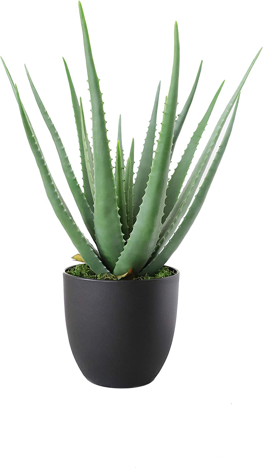 Artificial aloe succulent
