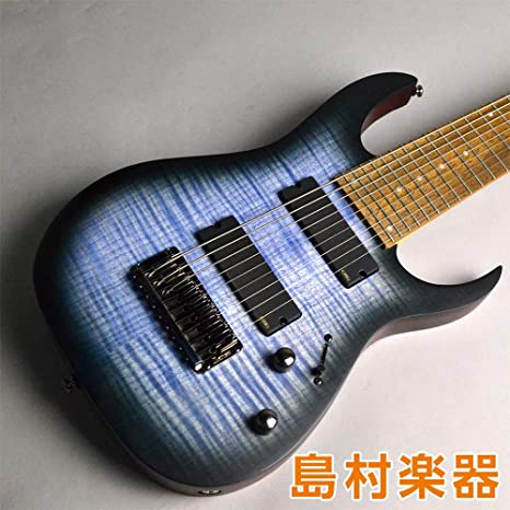 Ibanez RG Iron Label RGIR9FME-FDF - Cuerdas para guitarra ...