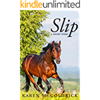 Slip: A short story by the author of The Dressage Chronicles