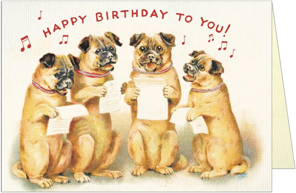 Dogs greetings card
