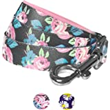 Blueberry Pet Daisy Floral Prints Dog Leash with Neoprene Padded Handle, 2 Patterns, Matching Collar & Harness Available Separately