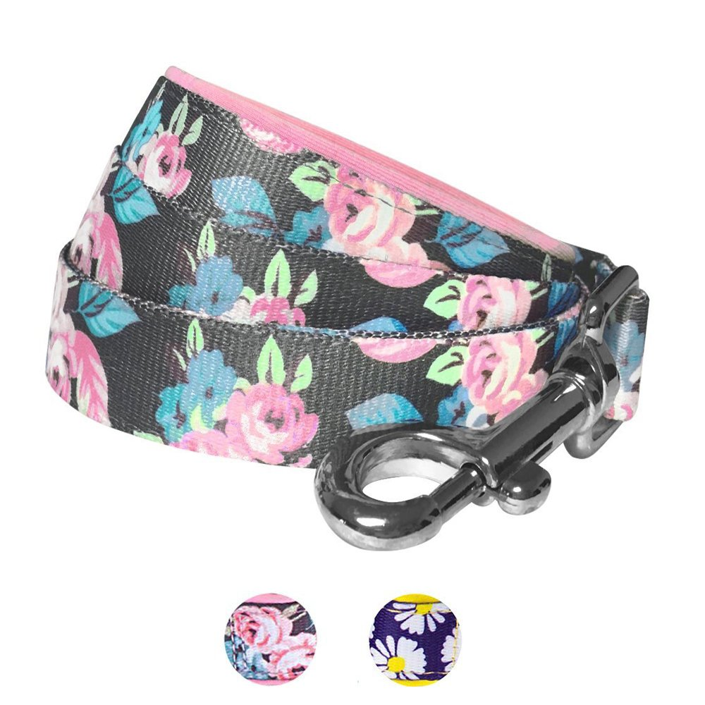 Blueberry Pet 2 Patterns Rose Flower Prints Girly Dog Leash Soft & Comfortable Handle, 5 ft x 5/8'', Small, Leashes Dogs
