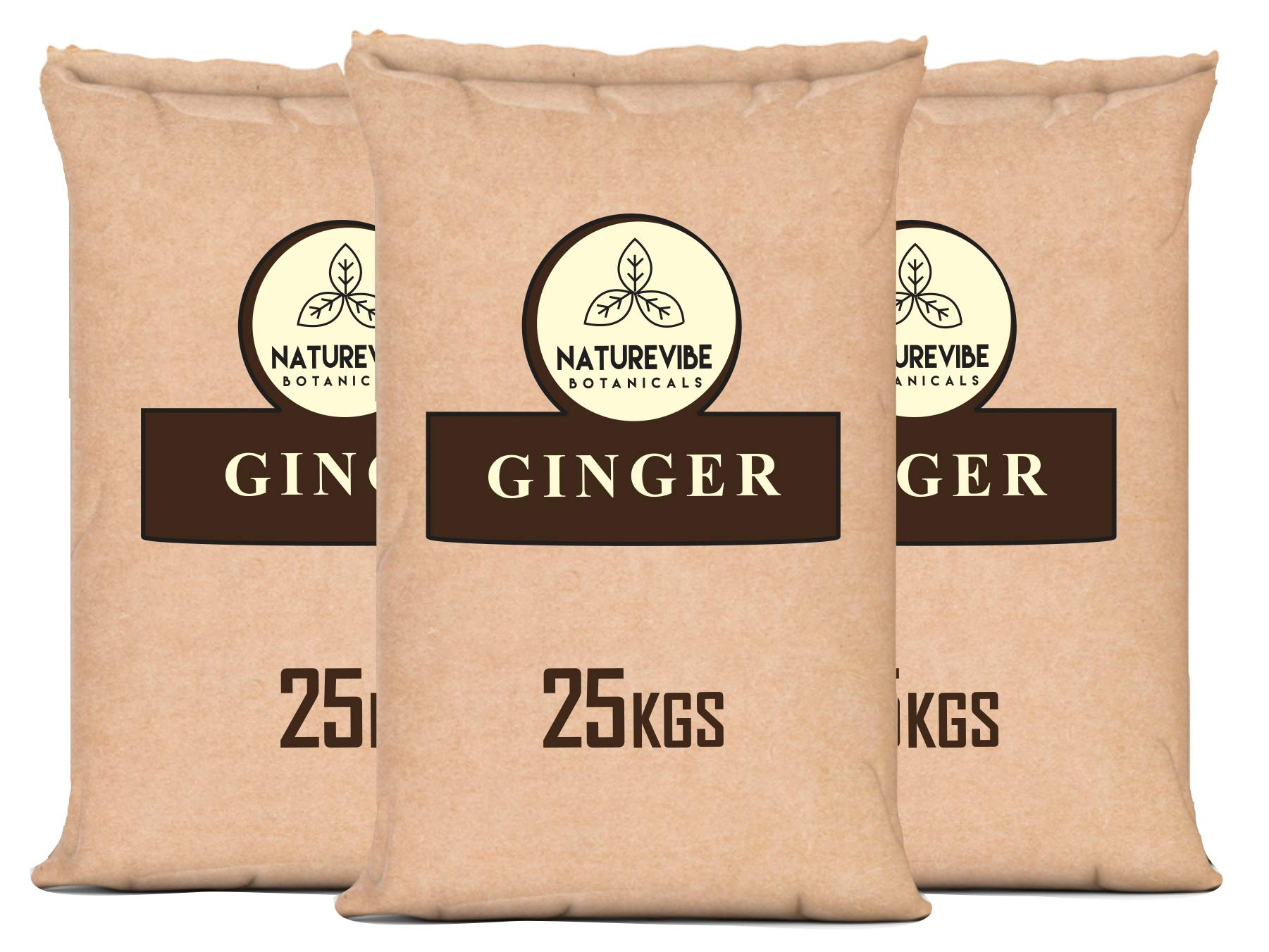 Naturevibe Botanicals Organic Ginger Powder 55 lbs, 25 kg Paper Bulk Bag
